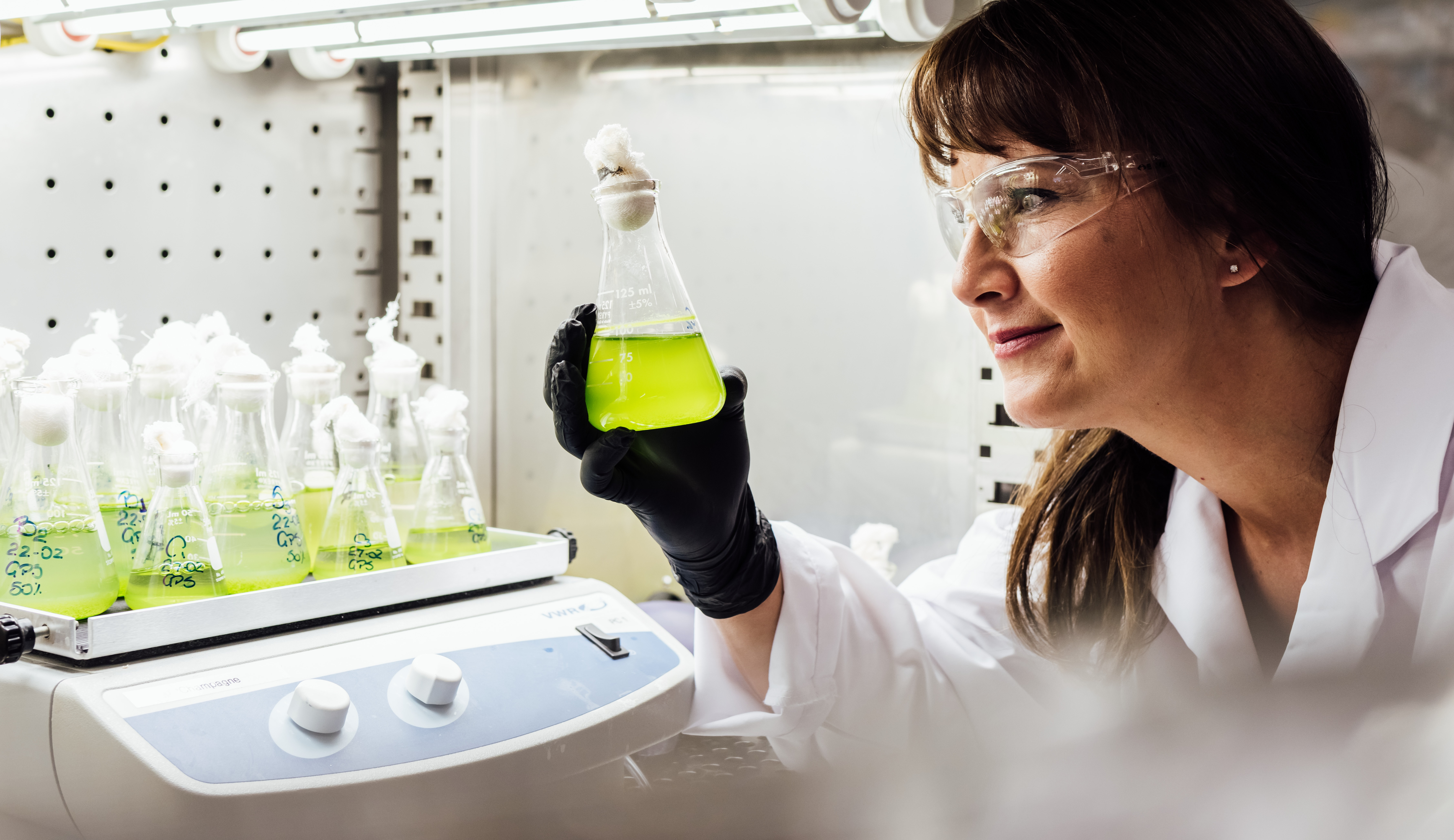 Algae Research in the Lab